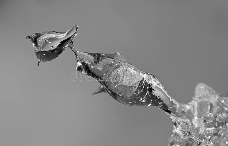 Gelo de derretimento abstrato com fundo cinzento imagem de stock
