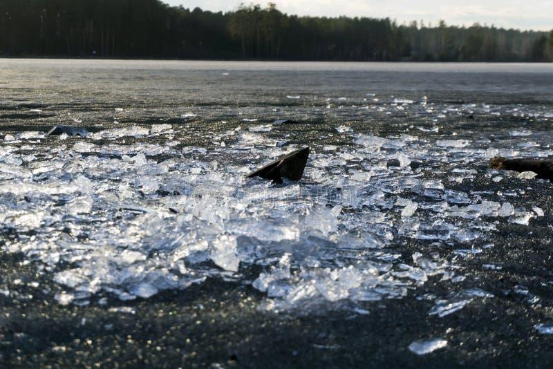 Gelo de derretimento na primavera na costa da lagoa fotos de stock royalty free