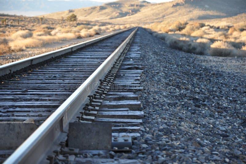 Binari ferroviari di Frost di mattina fotografia stock