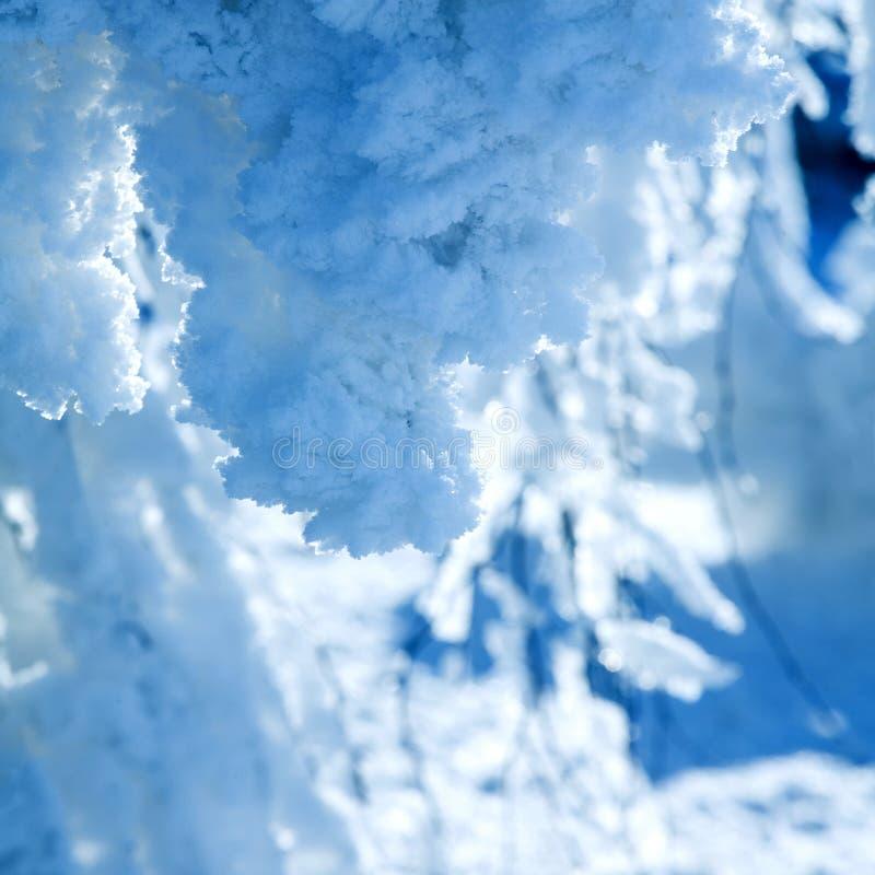 Download Gelo e neve foto de stock. Imagem de estação, outdoors - 12802422