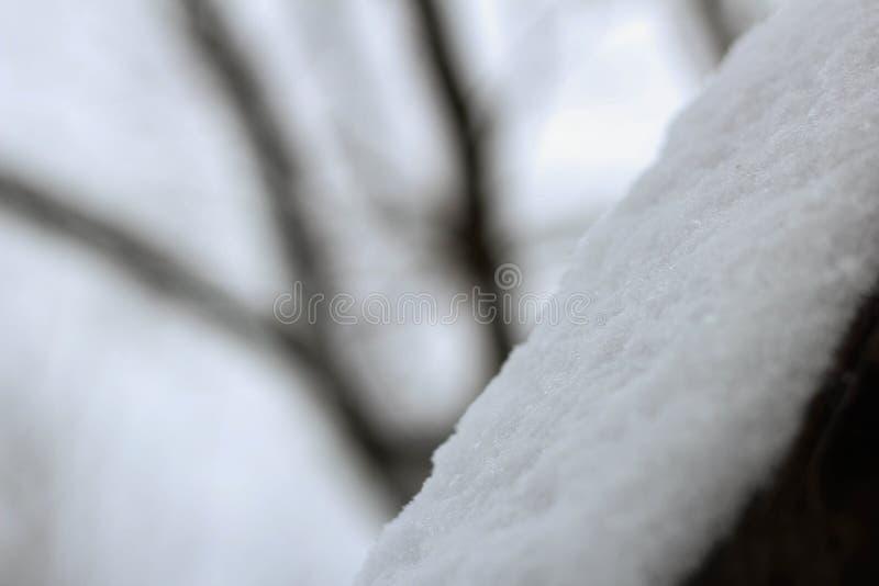 gelo nevado imagem de stock royalty free
