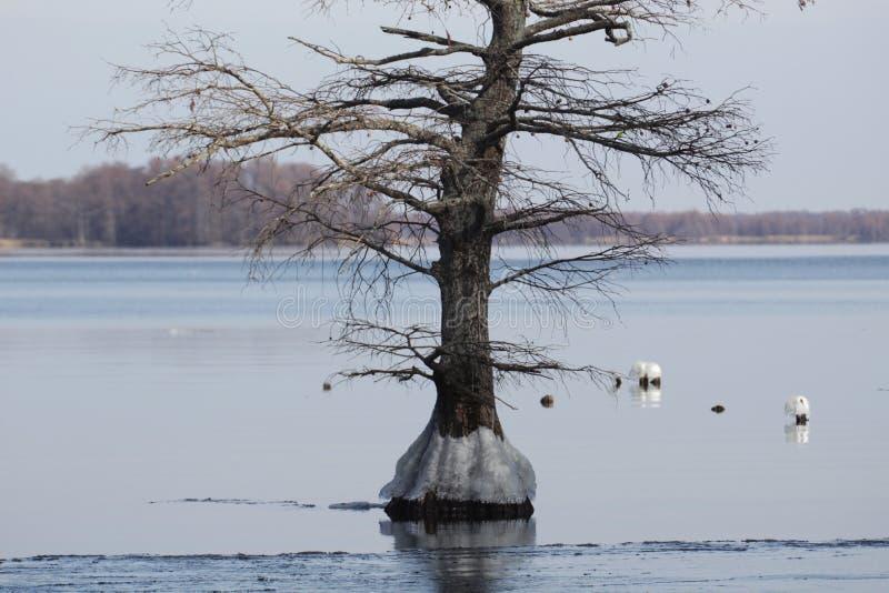 Gelo no lago fotografia de stock royalty free