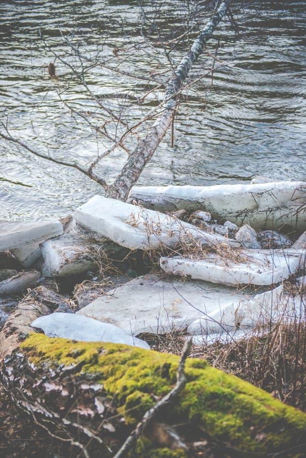 Gelo perto do rio, gelo na faixa do rio na primavera imagem de stock