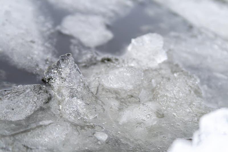 Gelo que derrete no rio Banquisas de gelo na ?gua fotos de stock
