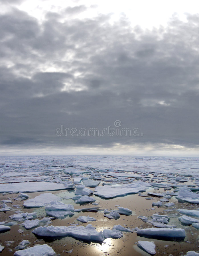 Gelo que flutua no mar ártico imagem de stock