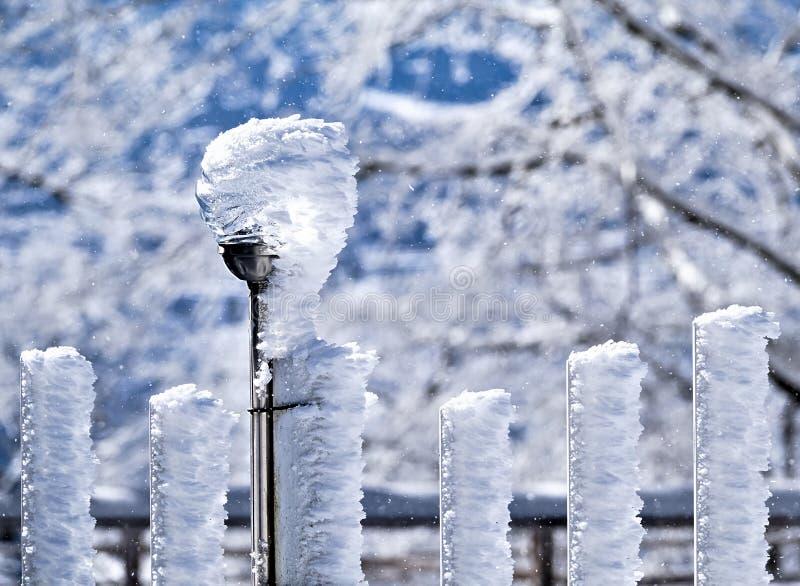 gelo Vento-soffiato sui pali della lampada del recinto e del recinto fotografia stock libera da diritti