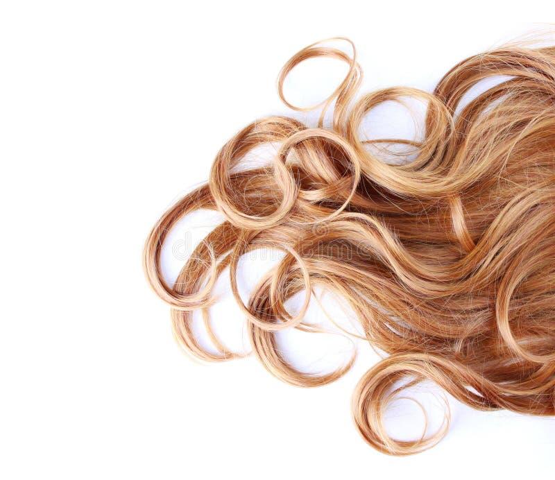 Gelocktes braunes Haar über Weiß lizenzfreies stockfoto