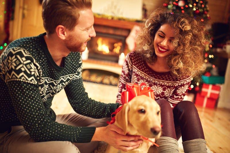 Gelocktes Mädchen mit Welpen als Weihnachtsgeschenk lizenzfreies stockbild