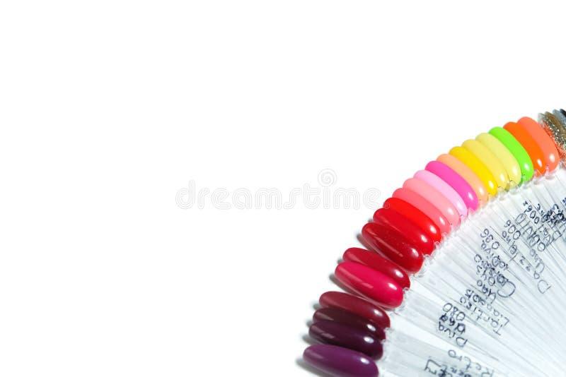 Gelpoliturpalette in den verschiedenen Farben lokalisiert auf weißem Hintergrund Kopienraum f?r Text, Draufsicht, flache Lage lizenzfreies stockbild