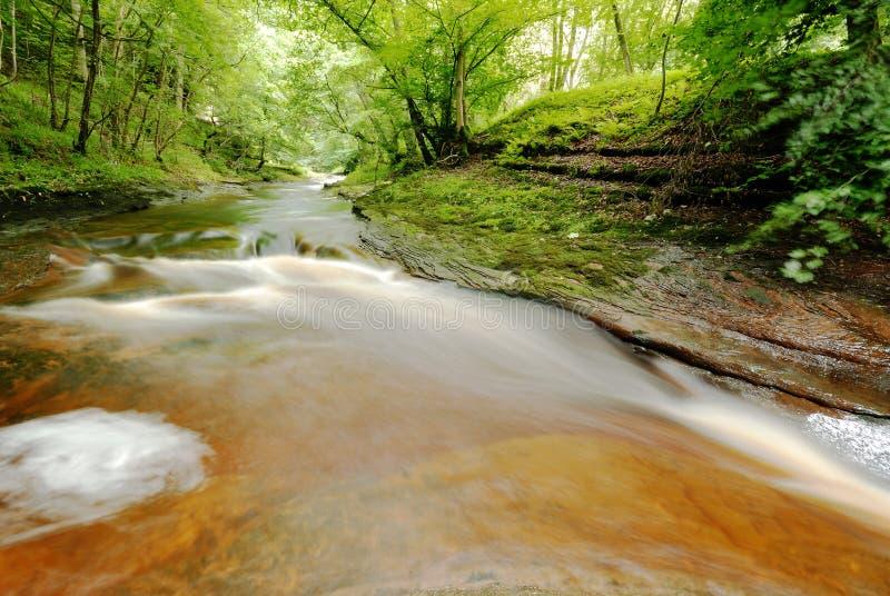 Gelt flod arkivfoto