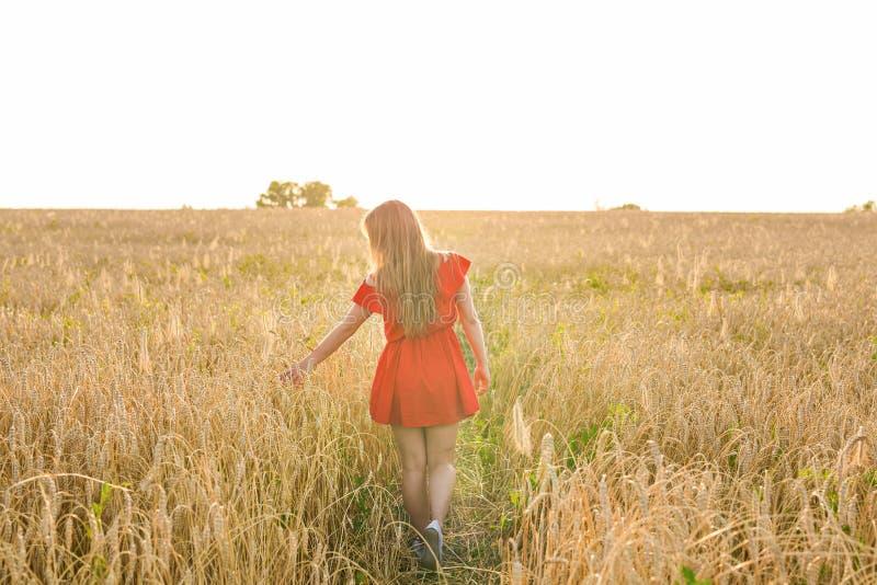 Geluk, aard, de zomer, de herfst, vakantie en mensenconcept - jonge vrouw op het gebied van rug royalty-vrije stock foto's