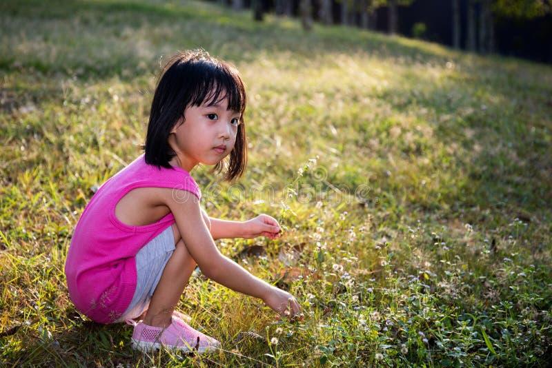 Gelukkig Aziatisch Chinees Meisje die Wilde Bloemen plukken stock afbeeldingen