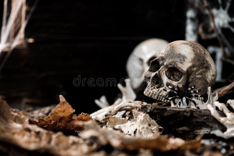 Gelukkig Halloween cencept royalty-vrije stock afbeelding