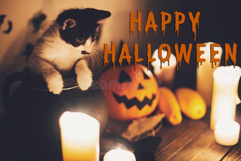 Gelukkig Halloween-tekstconcept Seizoenen die, griezelig Halloween begroeten royalty-vrije stock foto's