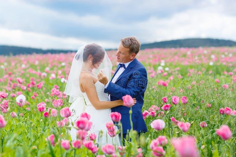 Gelukkig huwelijkspaar op roze papavergebied royalty-vrije stock foto's