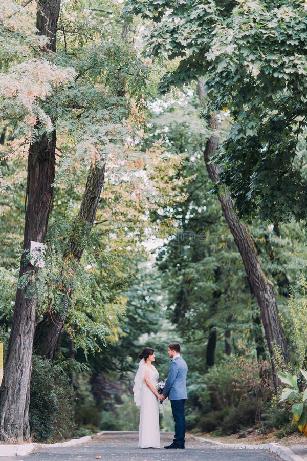 Gelukkig jonggehuwdepaar die in park met prachtige hoge bomen bij achtergrond koesteren royalty-vrije stock foto