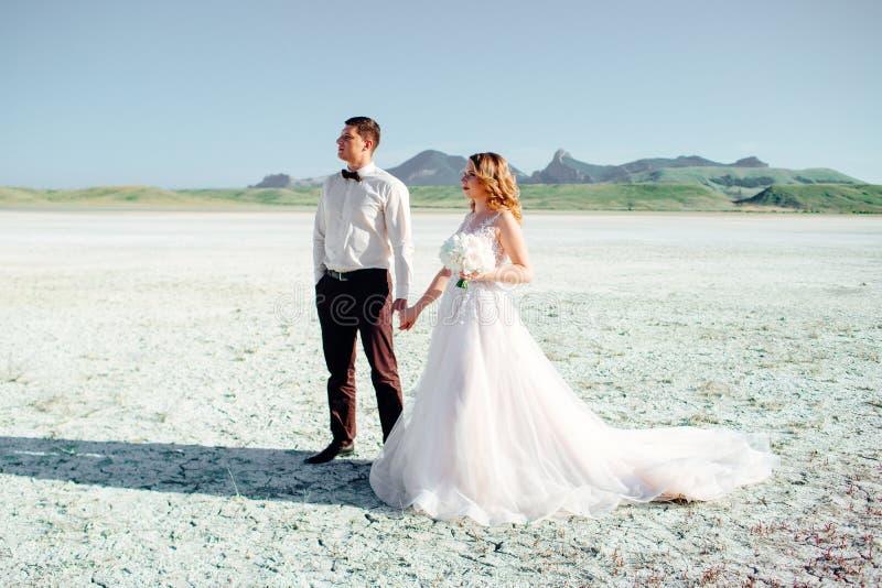 Gelukkig jonggehuwdepaar Mooie bruid en bruidegom in een kostuum stock foto's