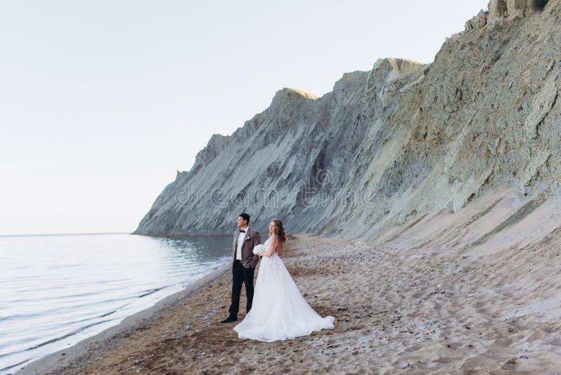 Gelukkig jonggehuwdepaar Mooie bruid en bruidegom in een kostuum stock afbeelding