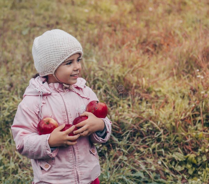 Gelukkig kind die rode appelen in zijn handen houden Oogst Grappig jong geitje in openlucht in de herfstpark stock afbeeldingen