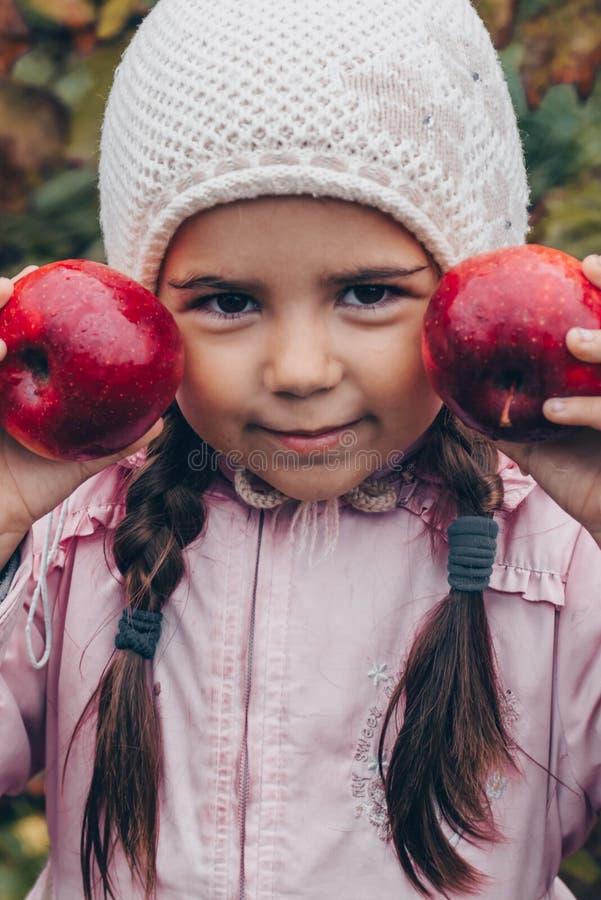 Gelukkig kind die rode appelen in zijn handen houden Oogst Grappig jong geitje in openlucht in de herfstpark royalty-vrije stock foto's
