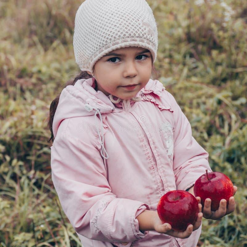 Gelukkig kind die rode appelen in zijn handen houden Oogst Grappig jong geitje in openlucht in de herfstpark stock afbeelding