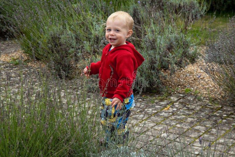 Gelukkig kind in tuin stock afbeeldingen