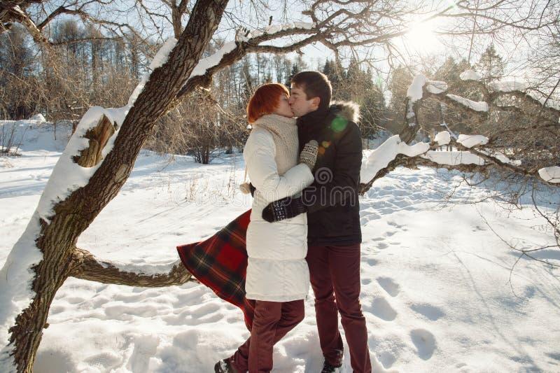 Gelukkig kussend paar op de winterbomen en parkachtergrond stock foto's