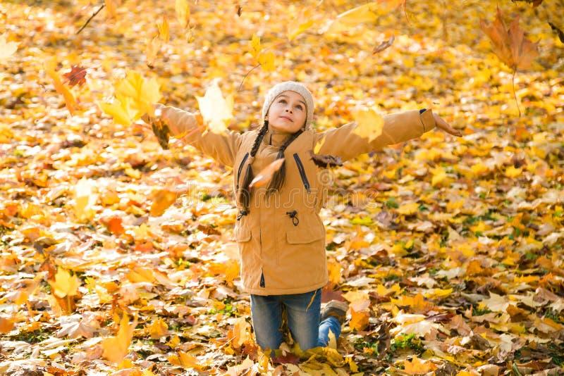 Gelukkig meisje die de gevallen bladeren werpen die omhoog, in het de herfstpark spelen royalty-vrije stock fotografie