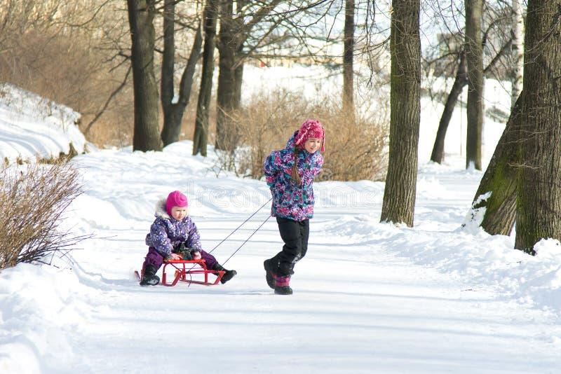 Gelukkig meisje die haar jonge zuster op de sleeën in sneeuw de winterpark trekken stock fotografie