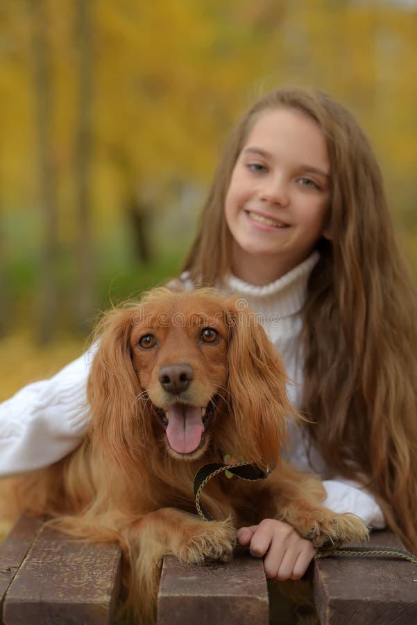 Gelukkig meisje in het park met een spaniel stock foto's