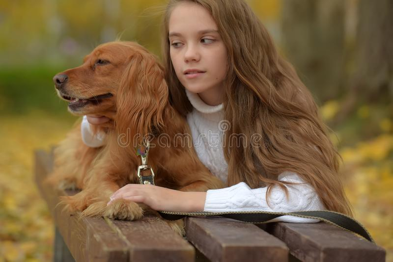 Gelukkig meisje in het park met een spaniel stock fotografie