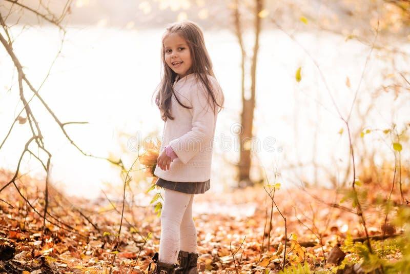 Gelukkig meisje op een gang in het de herfstpark stock afbeelding