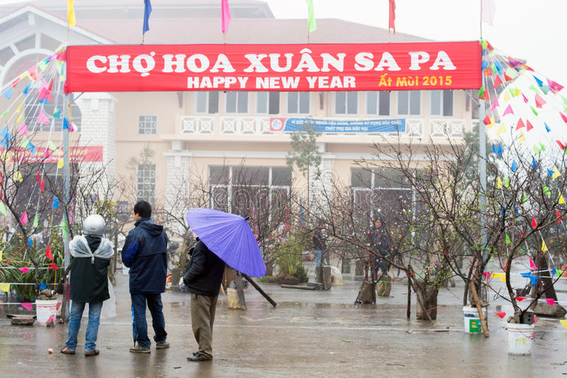 Gelukkig Nieuwjaar in Vietnam stock fotografie