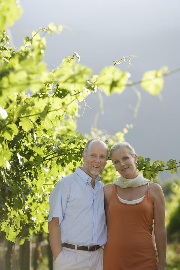Gelukkig Paar die zich in Wijngaard bevinden stock afbeeldingen