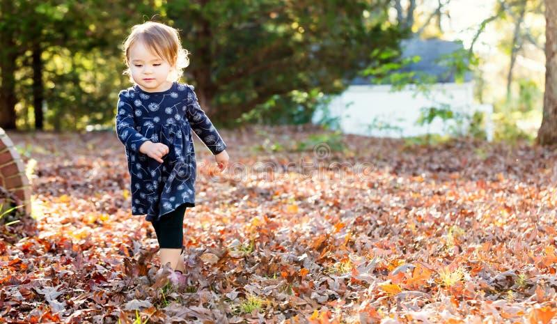 Gelukkig peutermeisje die buiten in de herfst spelen stock fotografie