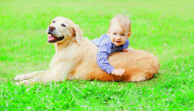 Gelukkig spelen weinig jongenskind en Golden retrieverhond samen op het gras op de zomerpark royalty-vrije stock foto