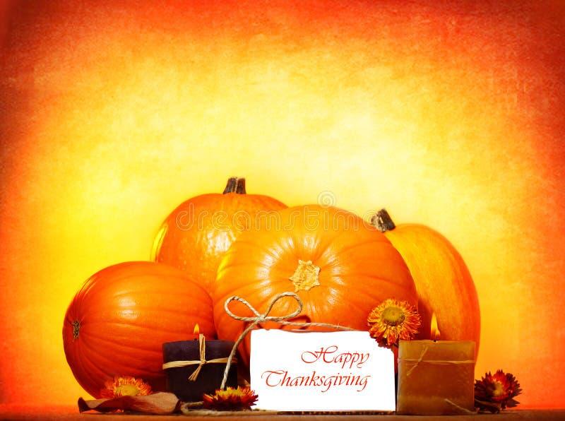 Gelukkig thanksgiving day royalty-vrije stock fotografie