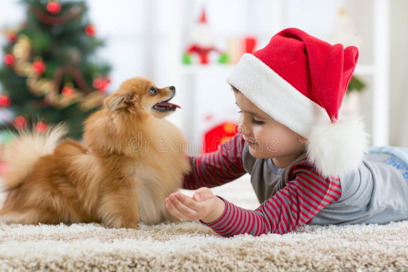 Gelukkig weinig jong geitjejongen en hond bij Kerstmis royalty-vrije stock afbeeldingen