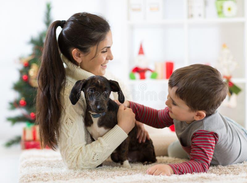 Gelukkig weinig jongen, zijn moeder en hond bij Kerstmis stock afbeeldingen