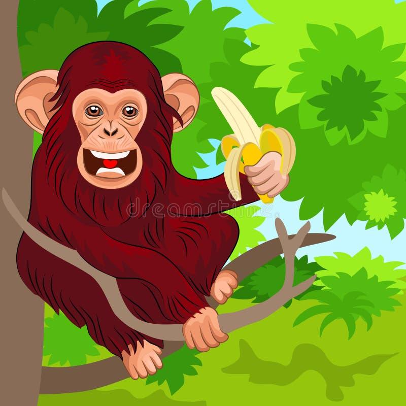 Gelukkige aapchimpansee met banaan stock illustratie
