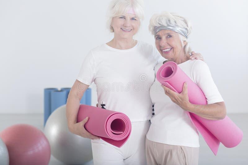 Gelukkige actieve bejaarden stock afbeelding
