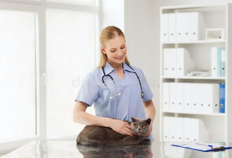 Gelukkige arts met kat bij dierenartskliniek stock afbeelding