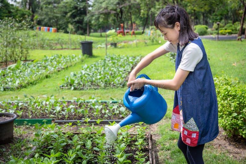 Gelukkige Aziatische meisje het water geven installaties met gieter in organische tuin, activiteiten, hulpouders om groenten in d stock foto