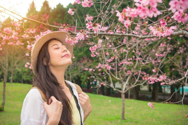 Gelukkige Aziatische vrouw die geur van roze bloemen genieten royalty-vrije stock foto's