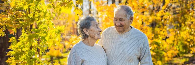 Gelukkige bejaarden in de de herfst bosfamilie, de leeftijd, het seizoen en mensenconcept - gelukkig hoger paar die over lopen royalty-vrije stock fotografie