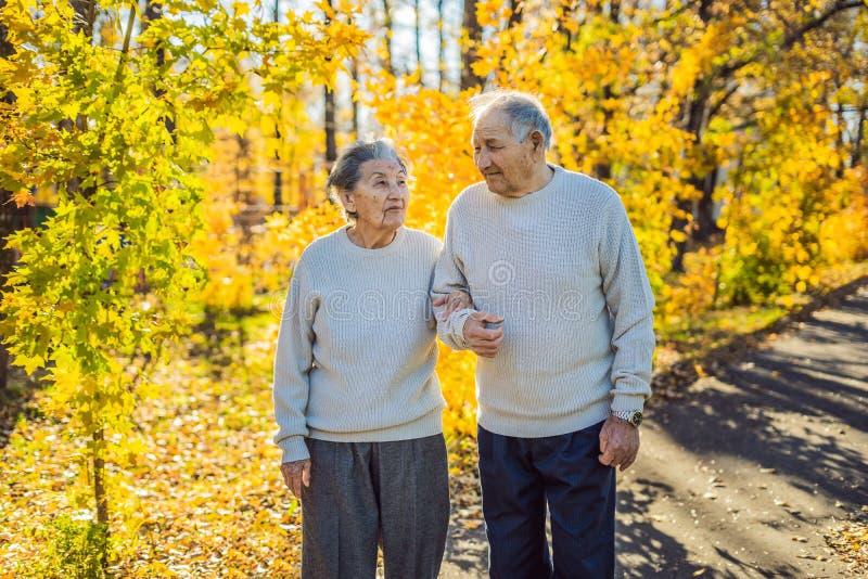 Gelukkige bejaarden in de de herfst bosfamilie, de leeftijd, het seizoen en mensenconcept - gelukkig hoger paar die over lopen royalty-vrije stock foto