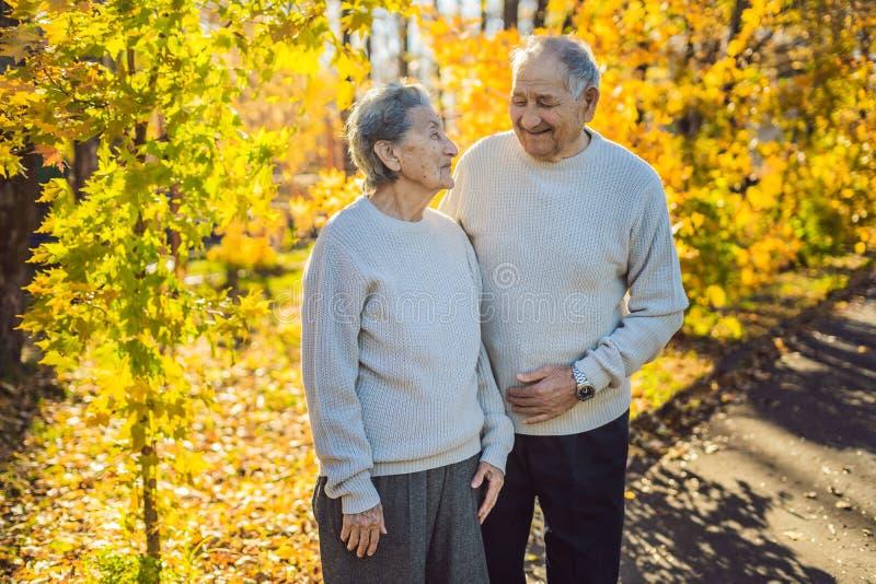 Gelukkige bejaarden in de de herfst bosfamilie, de leeftijd, het seizoen en mensenconcept - gelukkig hoger paar die over lopen stock afbeeldingen