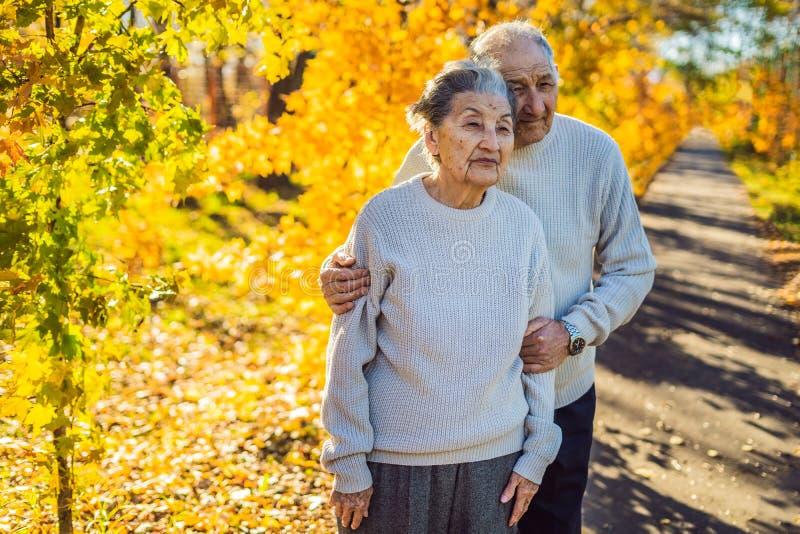 Gelukkige bejaarden in de de herfst bosfamilie, de leeftijd, het seizoen en mensenconcept - gelukkig hoger paar die over lopen stock fotografie