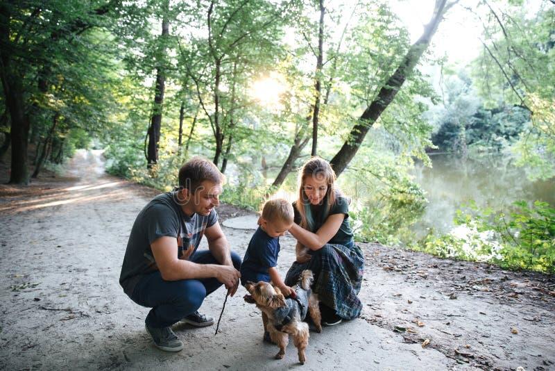 Gelukkige blije jonge familievader, moeder en weinig zoon die pret in openlucht met een hond hebben, die samen in de zomerpark sp royalty-vrije stock foto