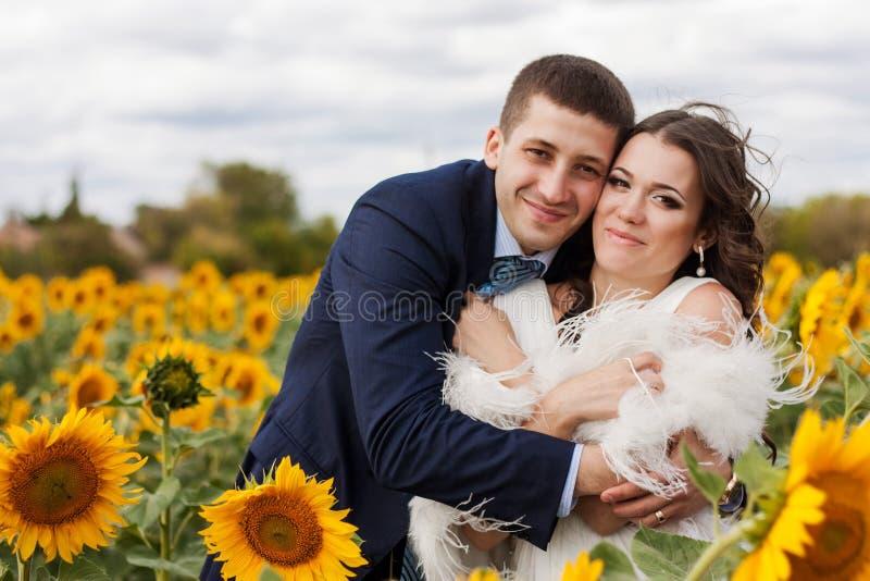 Gelukkige bruid en bruidegom op een gebied van zonnebloemen. stock fotografie